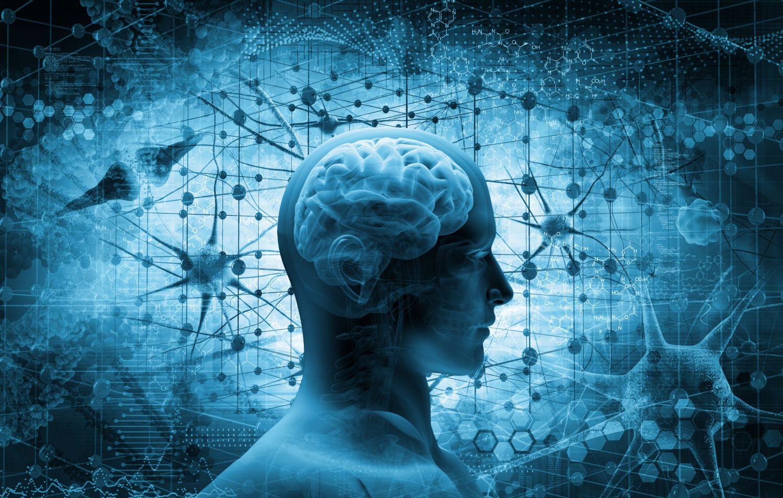 Kopf mit schematischer Darstellung des Gehirns