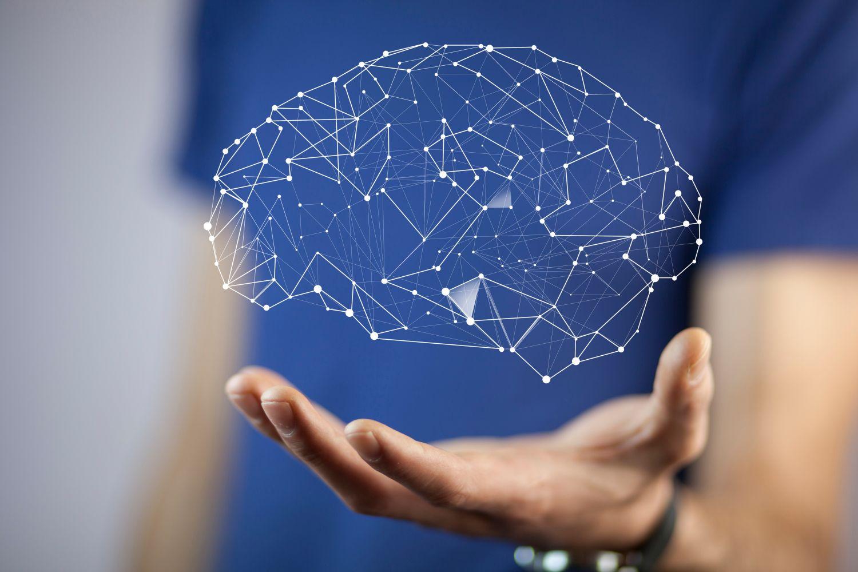 Eine Hand hält ein netzartiges Gewebe, das das menschliche Gehirn darstellt. Thema: Erkrankungen des Nervensystems